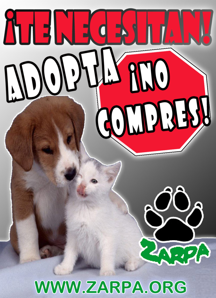 adopta1