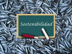 pesca-sostenible